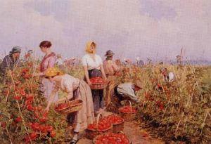 ACHILLE BELTRAME La raccolta del pomodoro. Olio su tela, 1930. (Collezione privata)