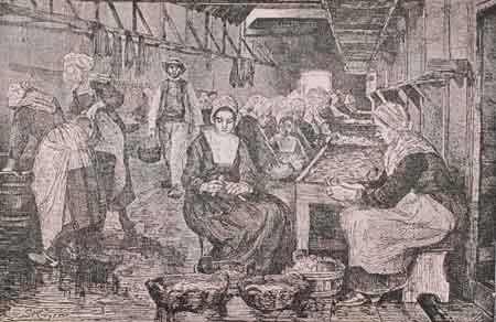 4. Pulitura delle sardine in una fabbrica di conseve ittiche alla fine del XIX secolo