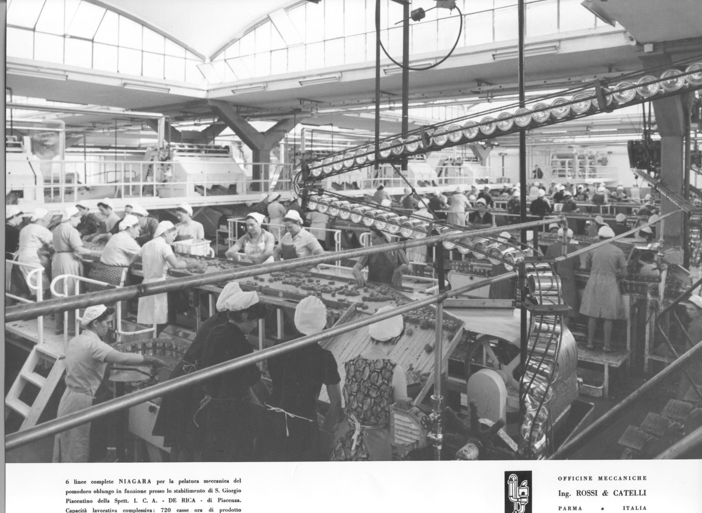 Le linee per la lavorazione del pomodoro installate da Rossi & Catelli nello stabilimento DE RICA di Piacenza negli anni Sessanta del Novecento.